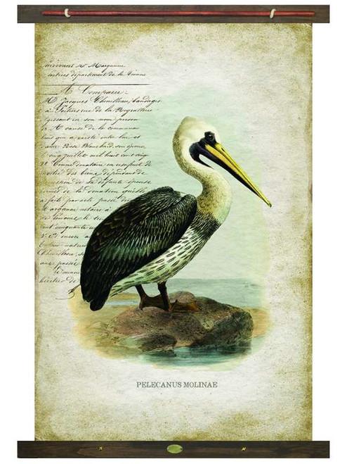Pelican Vintage Canvas Wall Art