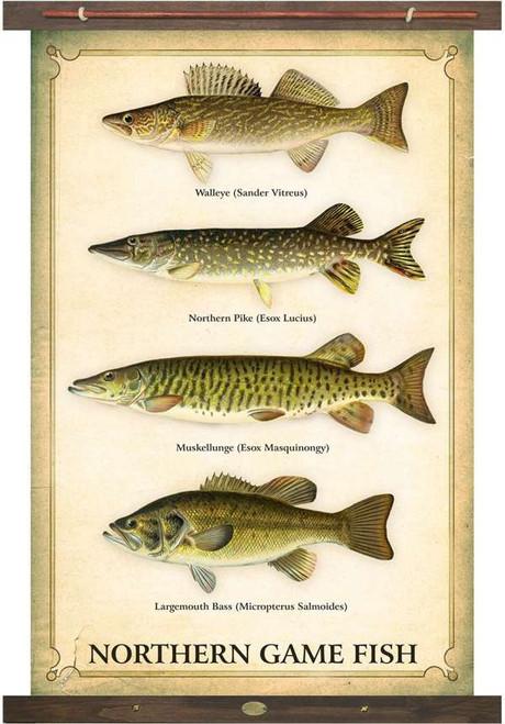 Vintage Inspired Lake Fish Tapestry Wall Art