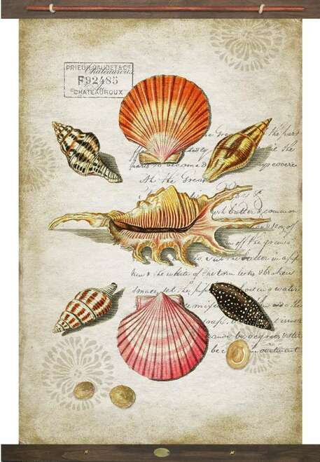 Colorful Botanical Sea Shells Tapestry Wall Art