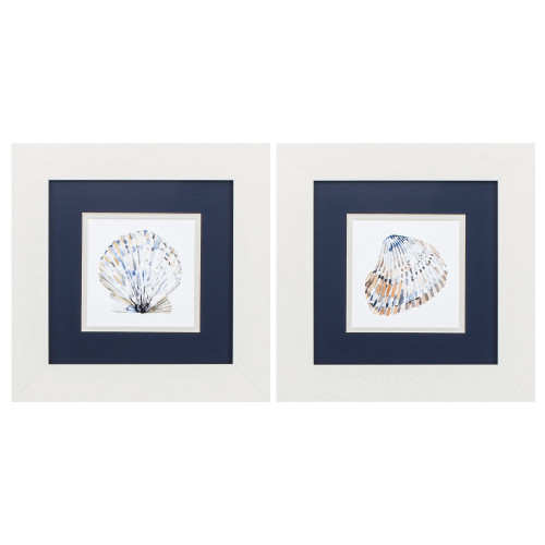 Simple Shells in White Frames - Set of Two