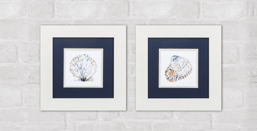 Simple Shells in White Frames - Set of Two wall example