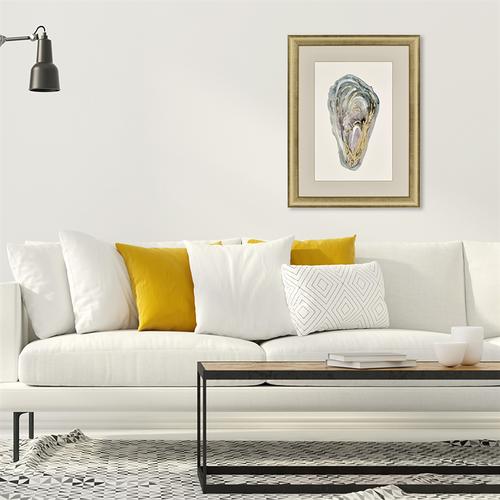 Gold Highlighted Framed Crassostrea Virginica I room view