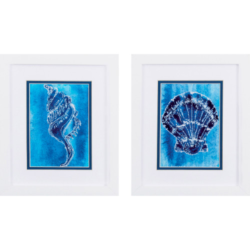Cerulean Shells B White Framed Art - Set of Two