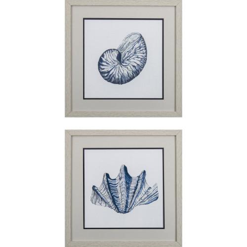Nautical Shells Wall Art- Set of Two