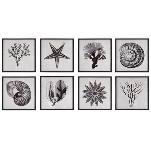 Sea Living Framed Set of Eight Prints main image