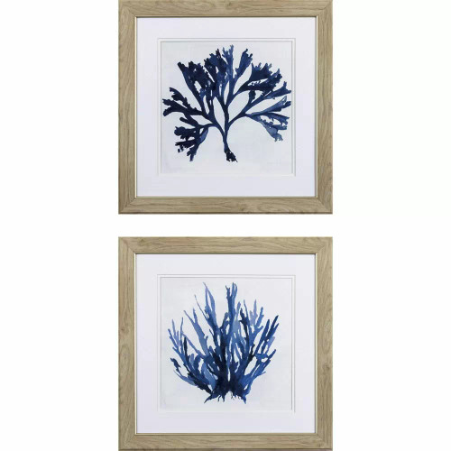 Indigo Blue Coral A- Set of Two