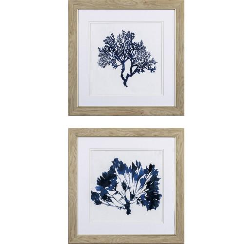 Indigo Blue Coral B- Set of Two