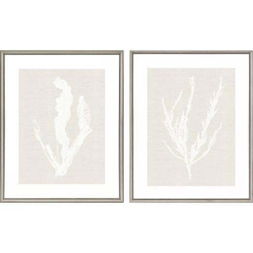 Seaweed Impressions - Set of Two