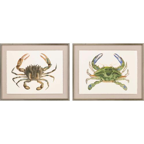 Crab Studies - Set of Two