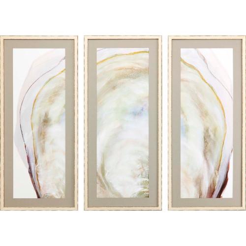 Oyster Shell Three-Piece Art Set