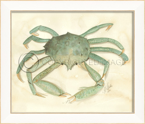 Spicher SS Crab No. 5