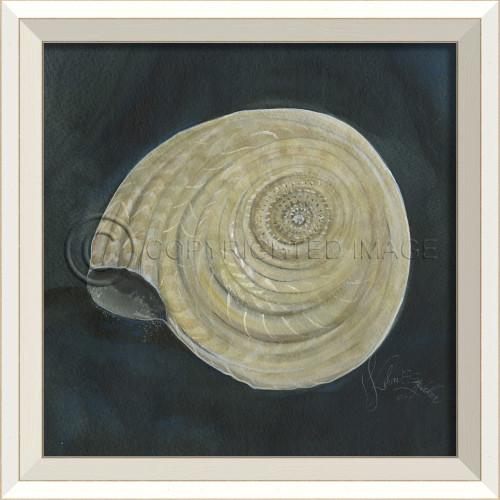 White Cottage Seashell No. 8 Framed Art