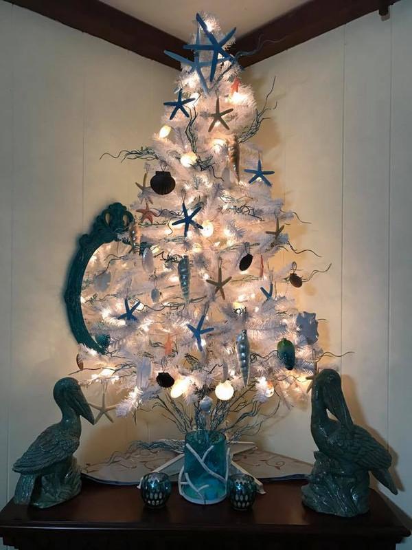 Annual Coastal Christmas Tree Round-Up!