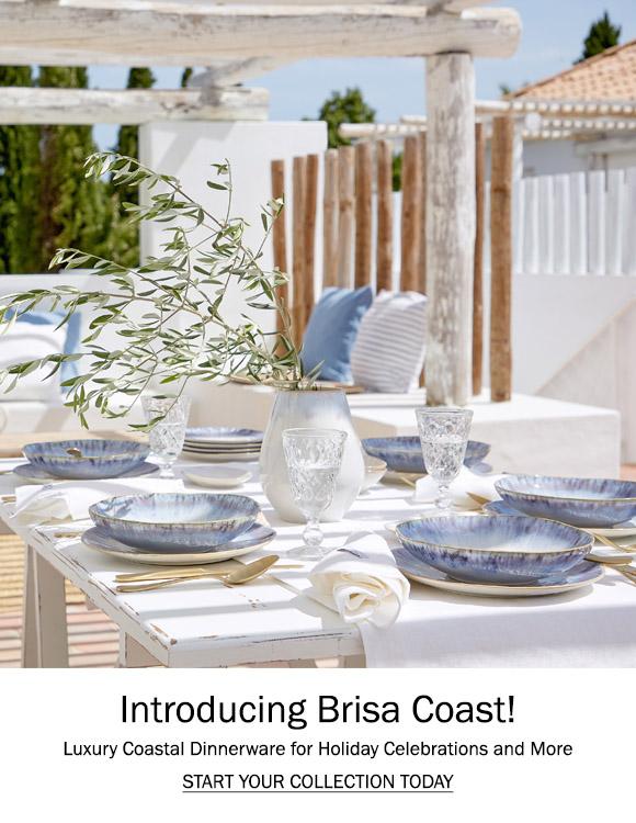 Introducing Brisa Coast!
