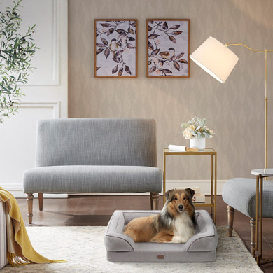 Bella Pet Couch