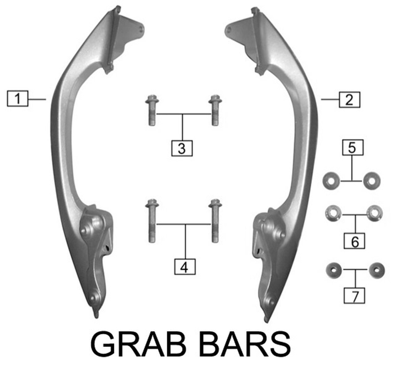 REAR GRAB BARS