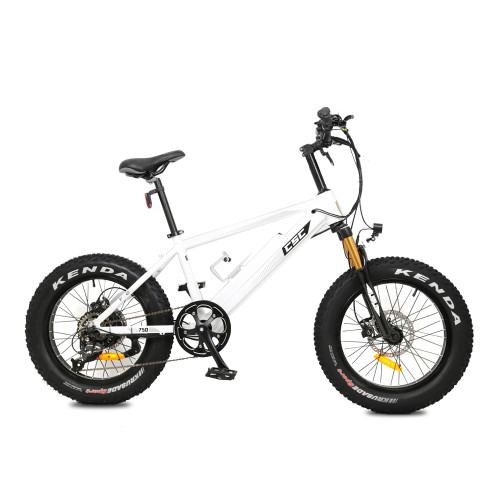 "FT750XP-20 Fat Tire E-Bike w/ 20"" Wheels"