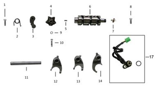 TT250 Shifting Drum Parts Diagram.