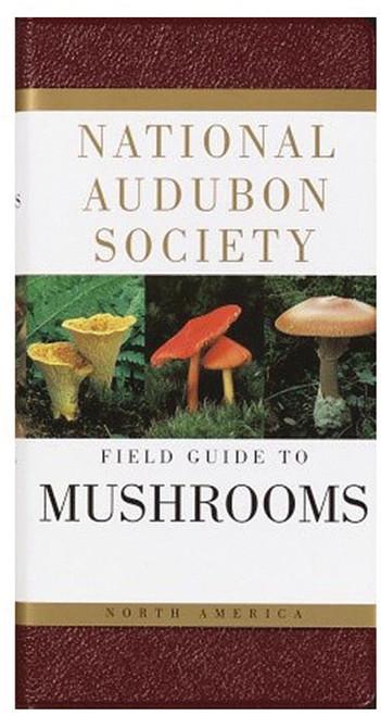 AUDBN FG: MUSHROOMS