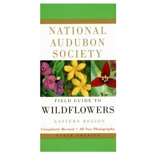 AUDBN FG: WILDFLOWERS-EASTERN