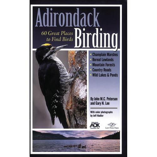ADIRONDACK BIRDING