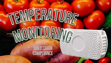 Temperature Monitoring to Maintain Cold Chain Compliance