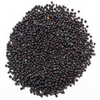Black Mustard Seed (3.5 ounces)
