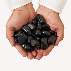 Black Shungite Tumbled Stones