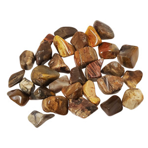 Petrified Wood Tumbled Stones