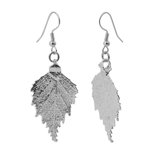 Silver Plated 0.8 x 1.3 inch Real Birch Leaf French Hook Drop Earrings