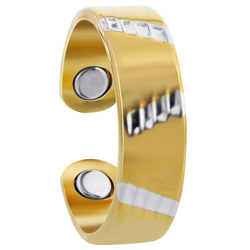 Two Tone Polished Finish Magnetic Band