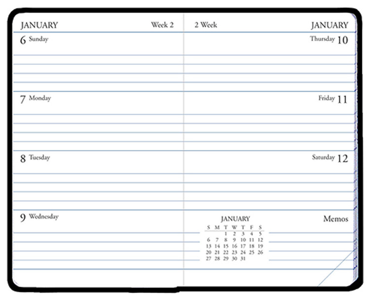 WB-41/0 2021 Skivertex Mini Weekly Planner Asst.
