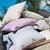 Alexander Rose Lavender Stripe Cushion