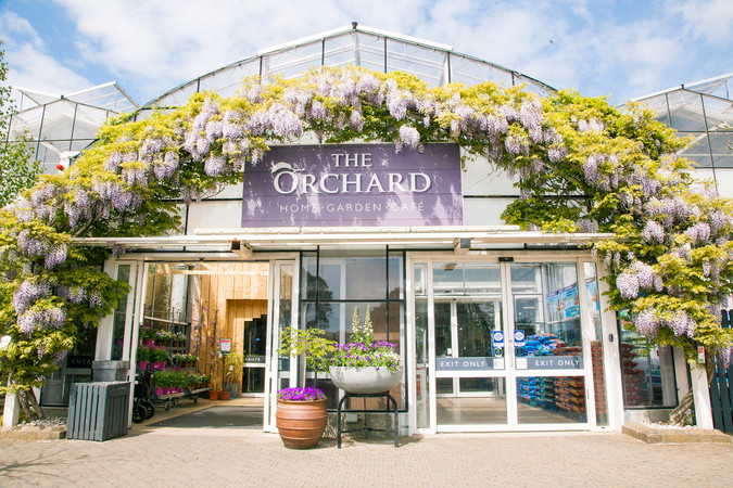 Summer at The Orchard