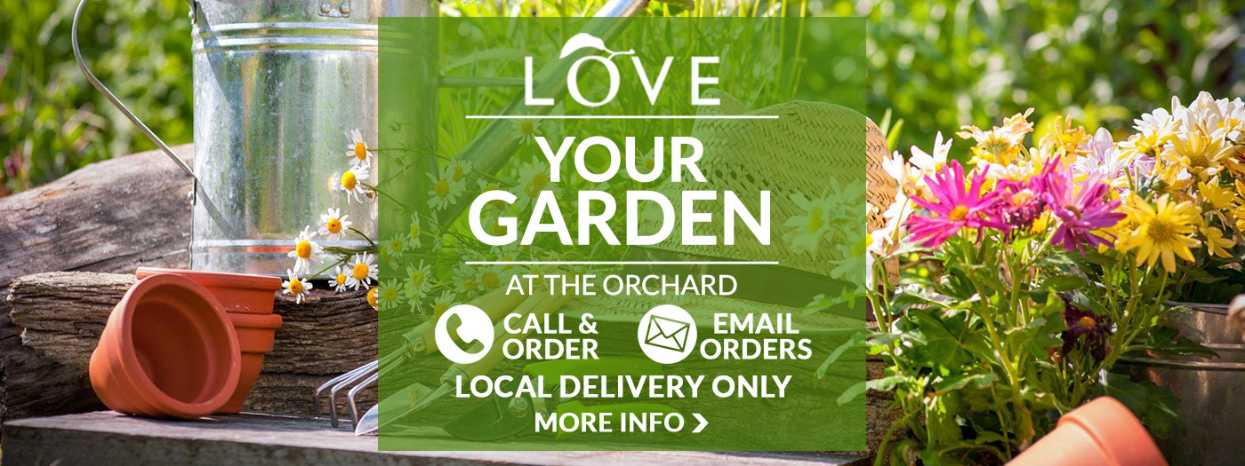 The Orchard Garden Centre