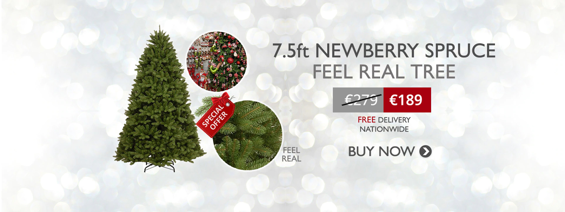 7.5ft Newberry Spruce Christmas Tree only €189.00