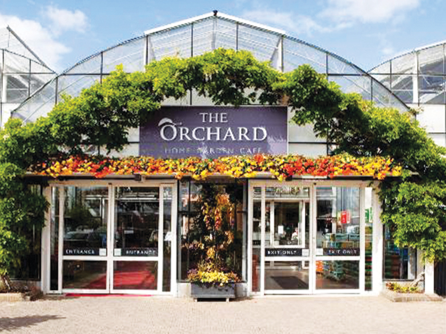 Visiting The Orchard