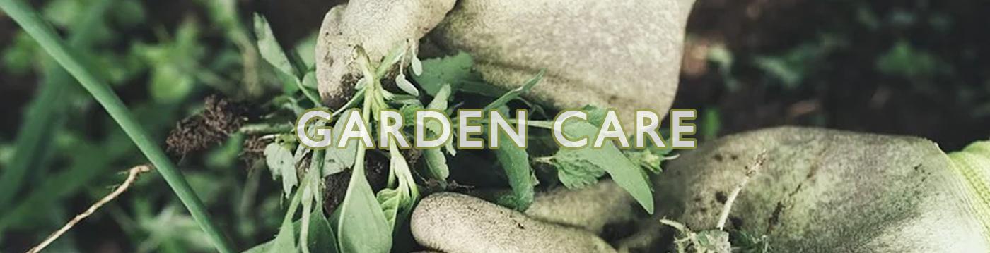 garden-care-main.jpg