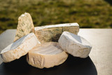 Cheese Moulding and Pressing Tips for at Home Cheese Making