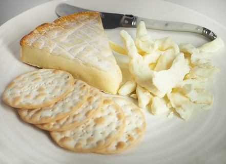 Beginner Cheese Making Frequently Asked Questions (FAQ)