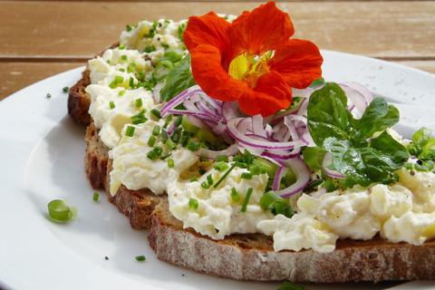 How To Make Vegan (Non-Dairy) Cheese Taste Better