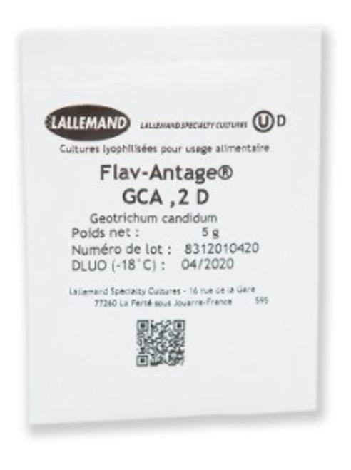 Geotrichum Candidum VEGAN STRAIN : FLAV-ANTAGE GCA  2 Dose