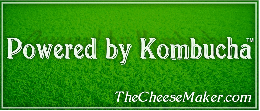 Powered by Kombucha Bumper Sticker