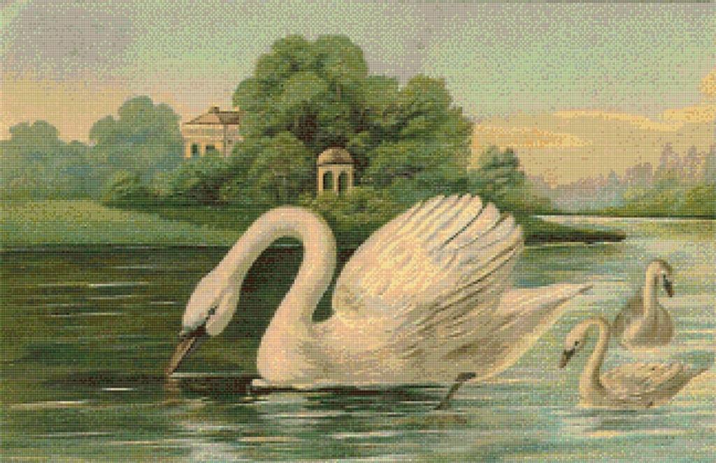 Swans on a Pond Cross Stitch Pattern