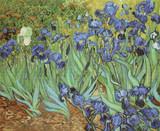 Irises Cross Stitch Pattern - Vincent van Gogh