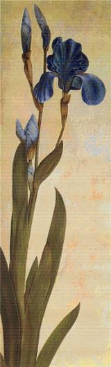 Iris Troiana Cross Stitch Pattern - Albrecht Durer