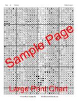 Hidden Lantern Cross Stitch Pattern - John Mejia