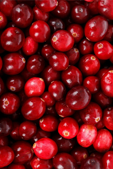 Fresh Maine Cranberries, 5 pounds shipped