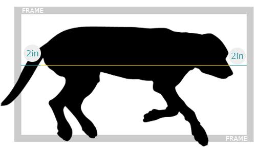 Sleep Size Example