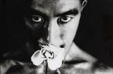 Eikoh Hosoe: Photographs 1951 - 1988